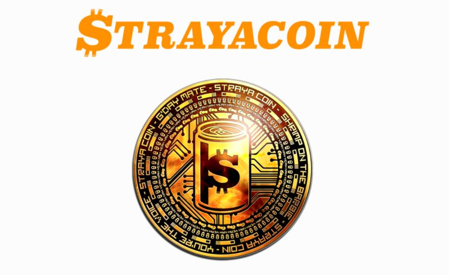 Cryptocurrency Coin Trusted - 384076