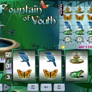 Fountain of Youth - 860802
